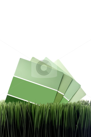 Vertical image of green paint chip samples on green grass with w stock photo, Vertical image of green paint chip samples on green grass with white space for copy by Vince Clements