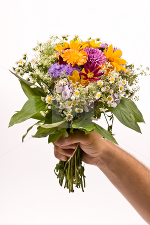 Bunch of flowers stock photo, Bunch of flowers in the man`s hand by Gennady Kravetsky
