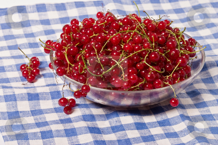 Currant stock photo, Fruit serias: red currant in the glass bowl by Gennady Kravetsky
