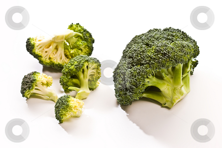 Broccoli stock photo, Macro picture, two heads of broccoli over white by Gennady Kravetsky