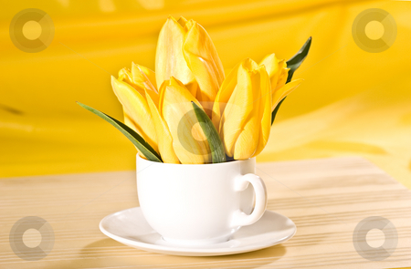 Yellow tulip stock photo, Yellow tulip in the bowl over yellow background by Gennady Kravetsky