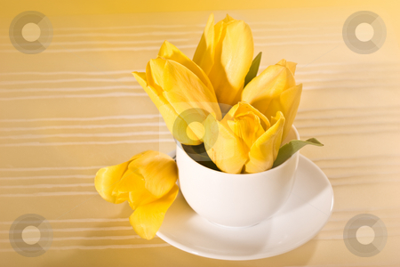 Tulip stock photo, Yellow tulip in the bowl over yellow background by Gennady Kravetsky