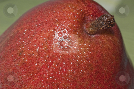 Pear stock photo, Macro close up shot of a red pear by Vlad Podkhlebnik