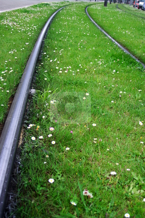 Green Transport stock photo, Light rail tracks laid through flowers and green grass by Martin Darley