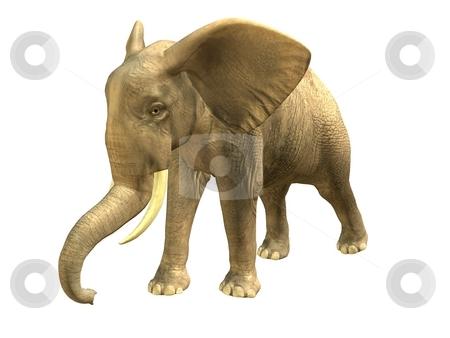 WALKING ELEPHANT  stock photo, 3D rendered isolated walking elephant. by Patrik Ruzic