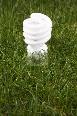 Energy Saving Light Bulb stock photo, Energy saving light bulb in green grass by Bryan Mullennix