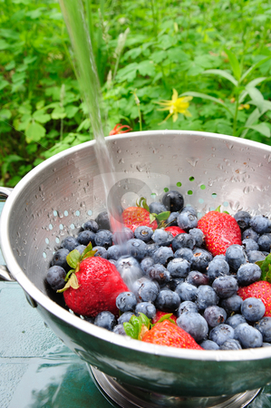 Blueberries And Strawberries stock photo, Washing off fresh berries in a bowl outside with clear cold water by Lynn Bendickson