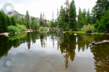 Glassy Mountain Lake stock photo, A small lake high in the california sierra nevada mountains with the surrounding forest reflected in the water. by Lynn Bendickson