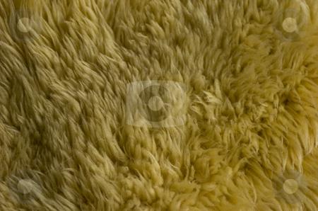 Sheepskin stock photo, Sheepskin by Andreas Brenner