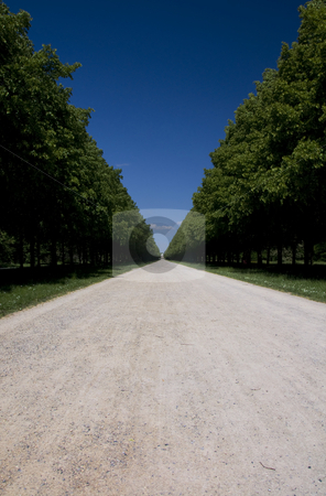 Allee stock photo, Parkavenue for recreation in Hanover by Nils Volkmer