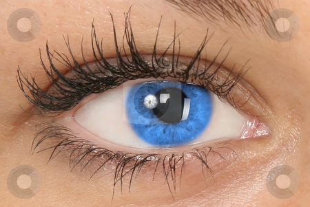 Blue eye stock photo, Blue eye close-up by Stelian Ion