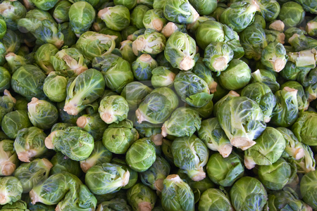 Brussel Sprouts stock photo, A bin full of fresh brussel sprouts at a local farmers' market by Steve Carroll