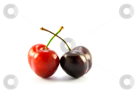 Two Cherries stock photo, Two cherries one red one black on a white background with clipping path by Keith Wilson