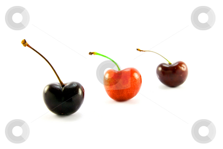 Three Cherries stock photo, Three cherries in a line on a white background by Keith Wilson