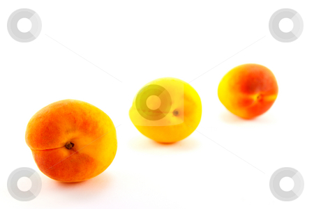 Three Apricots stock photo, Three apricots in a line on a white background by Keith Wilson