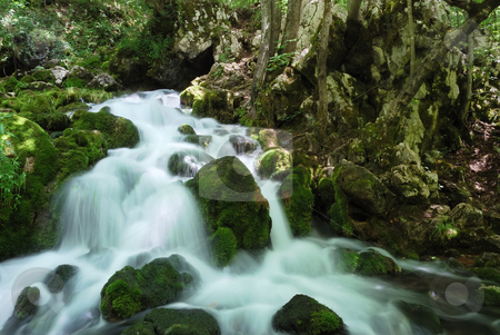 Cascade stock photo, Water spring with cascade in the forest surrounded by rocks, trees and moss. by Ivan Paunovic