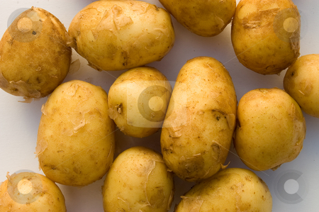 New potatoes on white background stock photo, Shot from above of clean new potatoes on white background by Christian Rhein