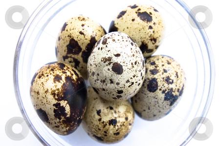 Quail eggs in glass bowl stock photo, Overhead shot of quail eggs in glass bowl on white background by Christian Rhein