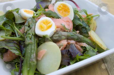 Salmon and Asparagus Salad stock photo, Close up 45 degree shot of lunch dish in square deep plate by Christian Rhein