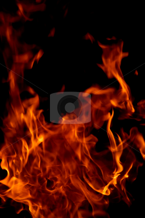 Flame stock photo, Burning of a tree it is very bad, but beautiful. by Sergey Goruppa