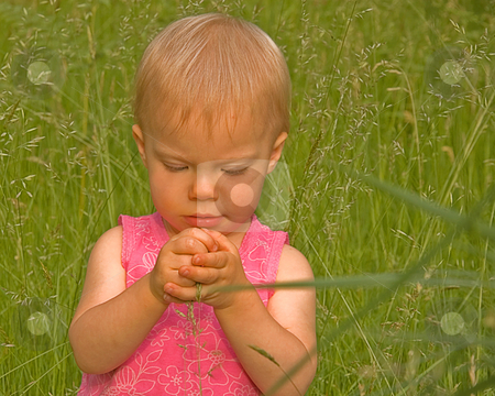 Cute Toddler In Long Grass Hands Together stock photo, This cute Caucasian toddler with blond hair is in very long grass and is grasping some grass seed heads within her closed hands. by Valerie Garner