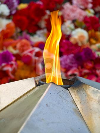 Eternal light  stock photo, Eternal light against the multicolored flowers by Sergej Razvodovskij