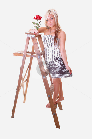 Girl on stepladder. stock photo, Pretty young girl in a black and white dress with long blond hair standing on the wooden stepladder, holding an red rose in her hand. by Horst Petzold