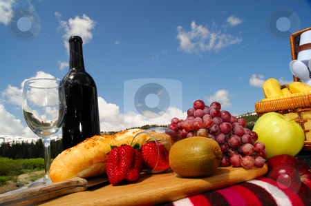 Fruit and Wine picnic stock photo, A picnic in a scenic mountain setting on a bright sunny day by Lynn Bendickson