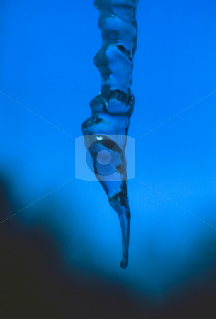 Icicle behind a blue sky stock photo, Icicle Against Blue Sky Background by Thomas Marchessault