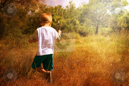 Young child in nature stock photo,  by Christophe Rolland