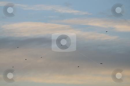 Sky stock photo, Sky in sunset by Dragos Iliescu