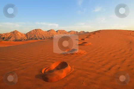 Footsteps in the Desert stock photo, Footsteps in the Desert by Roman Kalashnikov