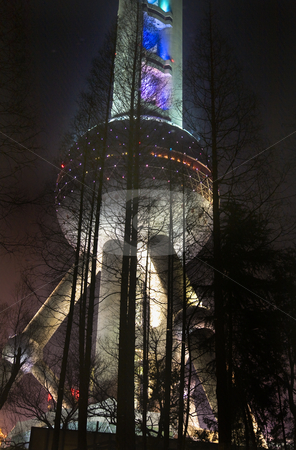 Reflectiion TV Tower Black Trees Night Pudong Shanghai China stock photo, Reflection in  Pond Shanghai TV Tower at Night Black Trees Pudong China by William Perry