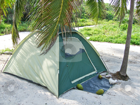Camping on beach under coconut grove stock photo,  by Shi Liu