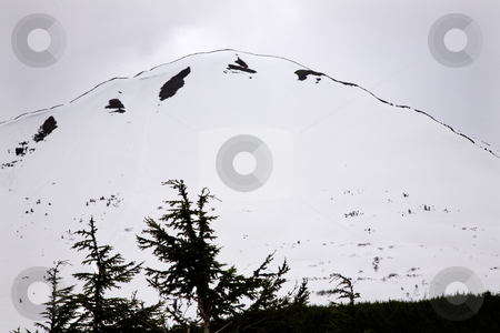 White Snow Mountain Outline Tree Seward Highway Anchorage Alaska stock photo, White Snow Mountain Tree Outlined against Sky, Seward Highway, Anchorage, Alaska by William Perry