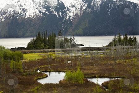 Snowy Mountain Range Two Lakes Seward Highway Anchorage Alaska stock photo, Two Lake, Trees, Ocean and Snow Mountains, Seward Highway, Anchorage, Alaska by William Perry