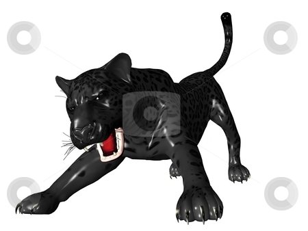 Agressive black panther front view stock photo, 3D rendered image of Black panther on white background an isolated by Patrik Ruzic