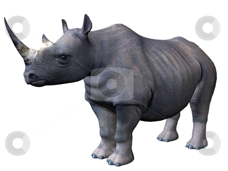 Standing rhinoceros stock photo, 3D rendered model of african rhinoceros on white background isolated by Patrik Ruzic