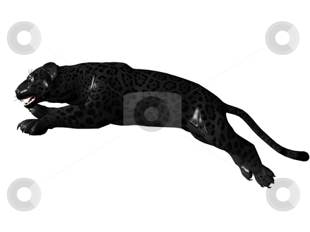 Jumping black panther stock photo, 3D rendered image of Black panther on white background an isolated by Patrik Ruzic