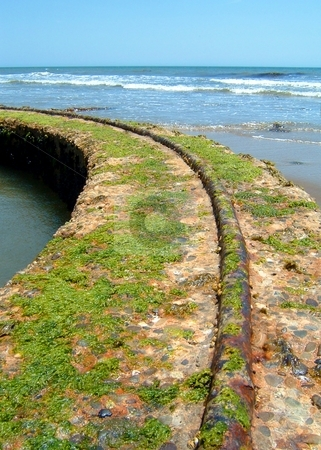 Old Tracks By The Ocean stock photo, Old tack structure by the beach with ocean in the background. by Henrik Lehnerer