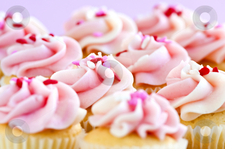 Cupcakes stock photo, Lots of tasty cupcakes with icing and sprinkles by Elena Elisseeva
