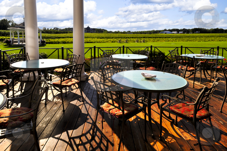 Patio overlooking vineyard stock photo, Patio chairs and tables near vineyard at winery by Elena Elisseeva