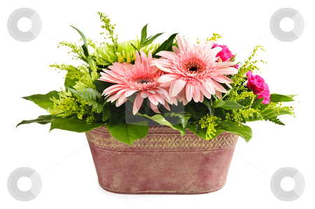 Isolated flower arrangement stock photo, Isolated floral arrangement with gerbera and chrysanthemums by Elena Elisseeva