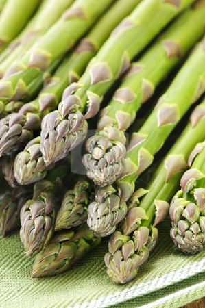 Asparagus stock photo, Close up of fresh green organic asparagus by Elena Elisseeva
