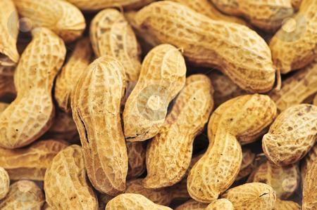 Peanuts stock photo, Closeup on pile of peanuts with shells by Elena Elisseeva