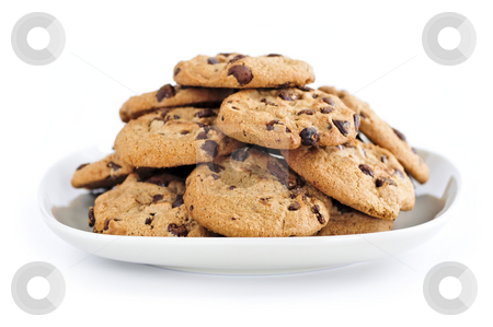 Chocolate chip cookies stock photo, Plate of chocolate chip cookies isolated on white background by Elena Elisseeva