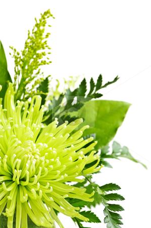 Flower arrangement stock photo, Close up of floral arrangement with green chrysanthemums by Elena Elisseeva
