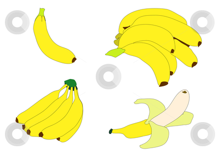 Bananas stock vector clipart, Illustration of various groupings of bright yellow bananas over white. by Robert Gebbie