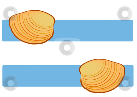 Clam Shells on Blue stock vector clipart, Vector Illustration of clam shells over blue title banners. by Robert Gebbie