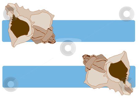 Sea Shells Blue Tag stock vector clipart, Vector Illustration of sea shells over blue title banners. by Robert Gebbie